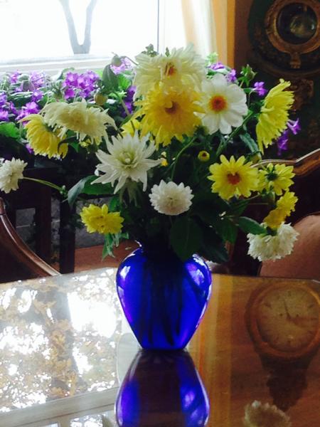 Prins Eugen Waldemarsudde blomster